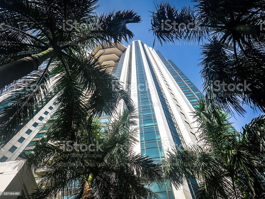 Palm Trees around Peninsula Hotel, Bangkok, Thailand stock photo
