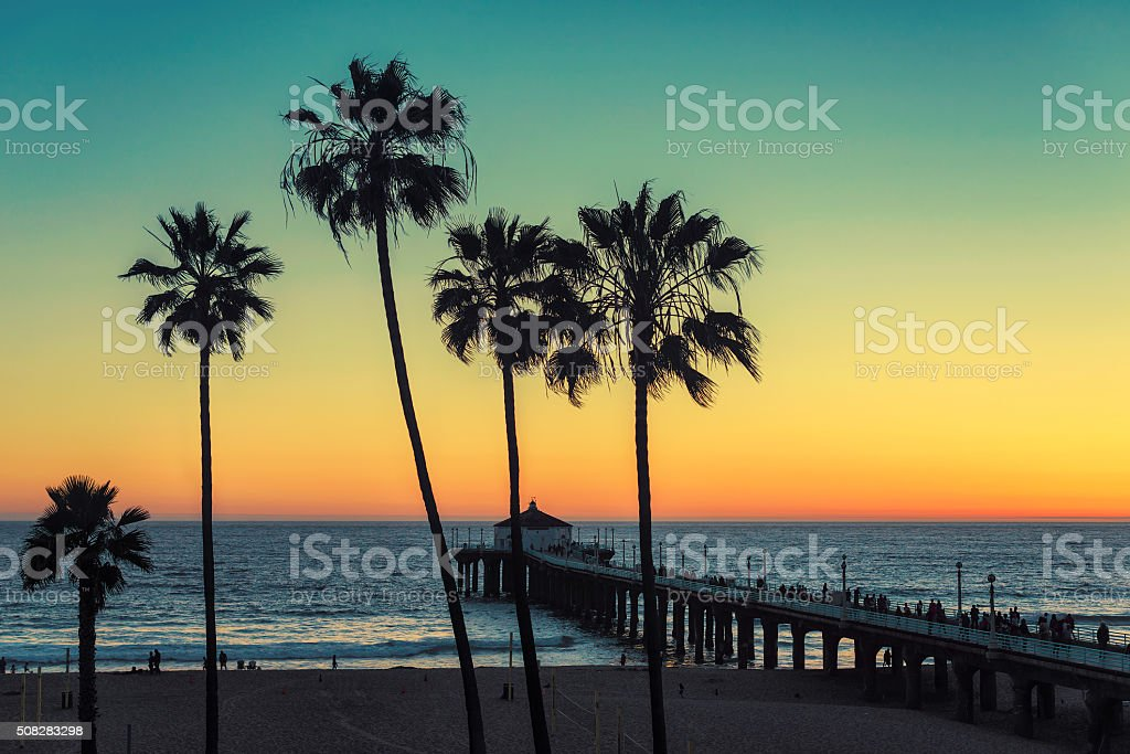 Palm trees at Manhattan Beach. Vintage processed stock photo