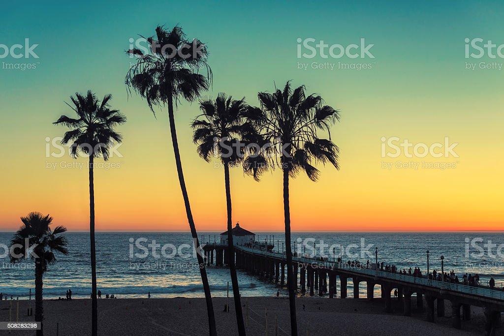 Palm trees at Manhattan Beach. Vintage processed stock photo