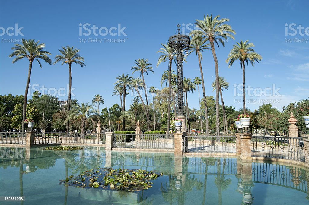 Palm trees at Parque Maria Luisa in Seville stock photo