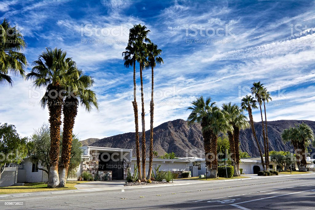 Palm trees, Mountains & homes in Palm Springs, California, USA stock photo