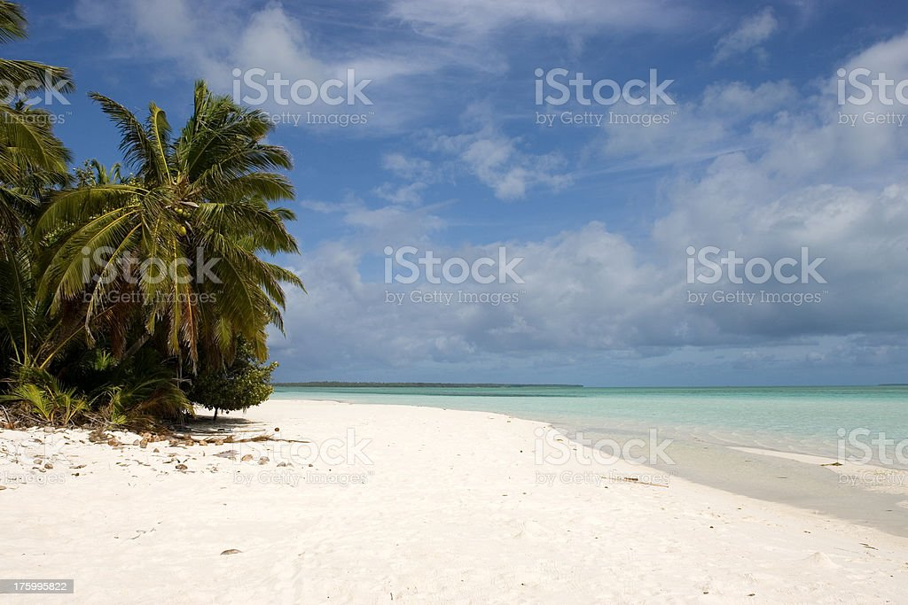 Palm Trees, Ocean and beautiful Beach on Cocos Island -Australia stock photo