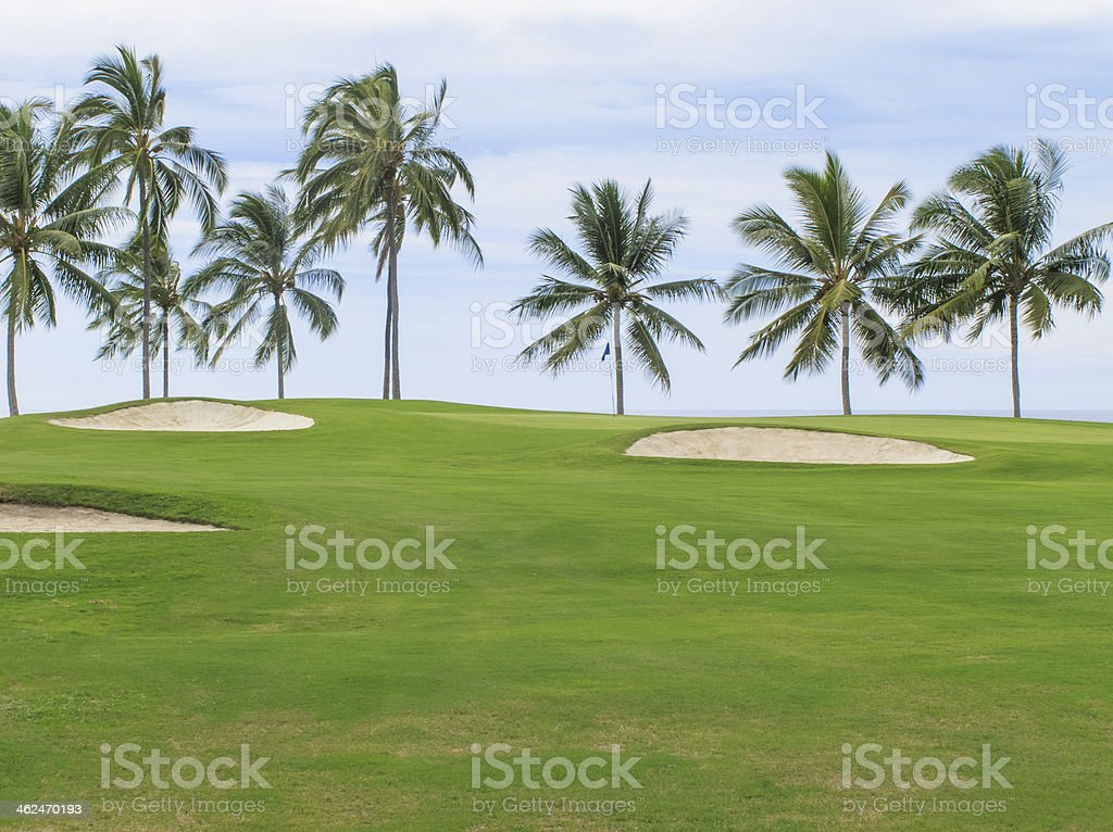 Palm trees on coastal golf course in Hawaii royalty-free stock photo