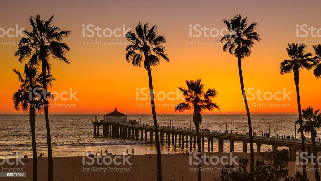 Palm trees on Manhattan Beach at orange sunset in California stock photo