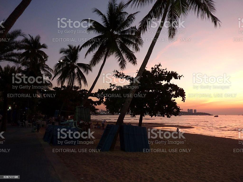 Palm trees on Pattaya beach at sunset, Thailand stock photo