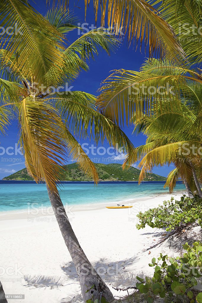 palm trees on Sandy Cay, British Virgin Islands royalty-free stock photo
