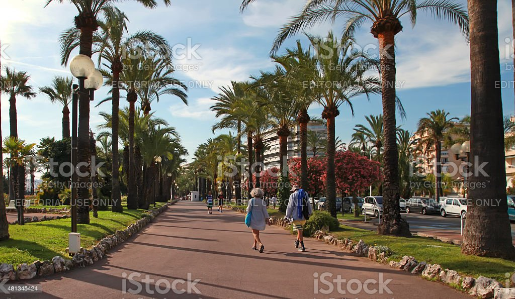 Palm trees on the Croisette in Cannes city stock photo