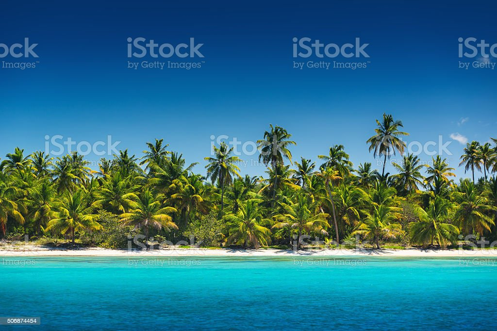 Palm trees on the tropical beach, Saona Island, Dominican Republ stock photo