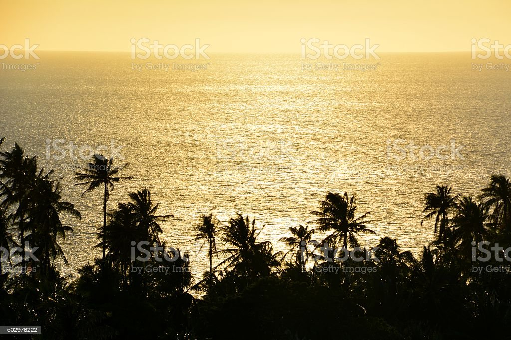 Palm trees over lush Camiguin coastline and seascape, Philippines stock photo