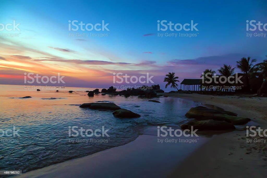 Palm Trees silhouettes Sunrise Tropical landscape sea stock photo