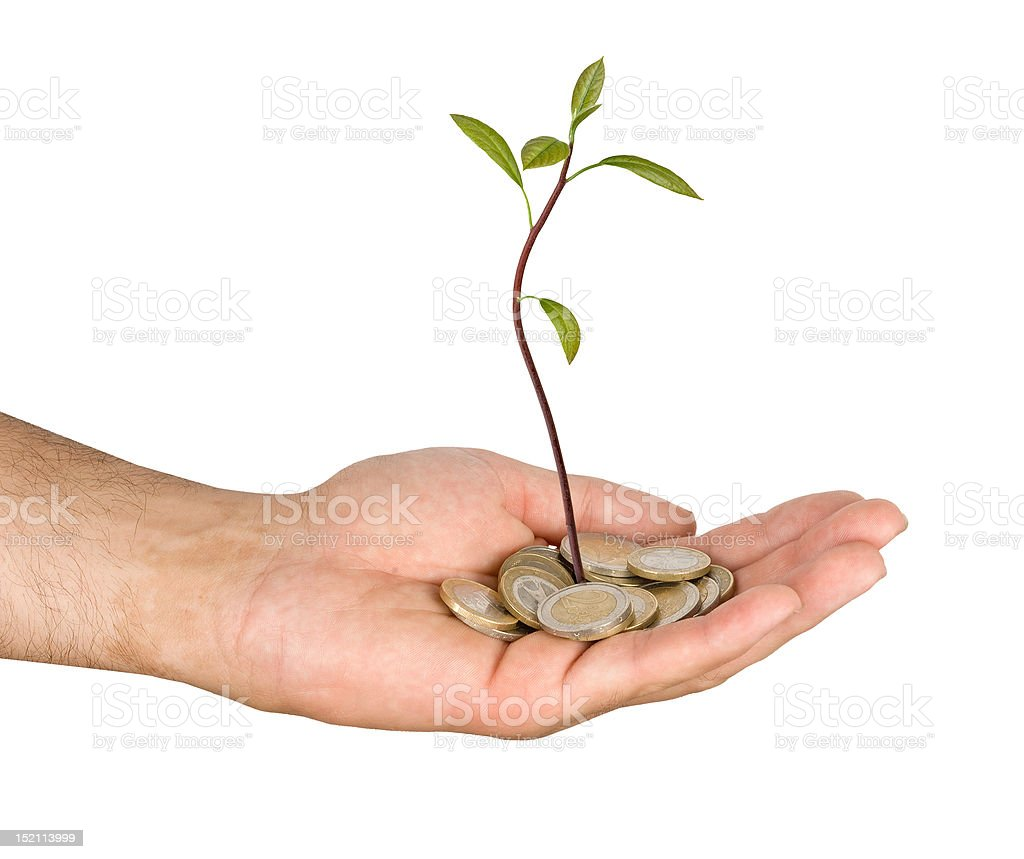 Palm with a sapling growing from pile of coins royalty-free stock photo