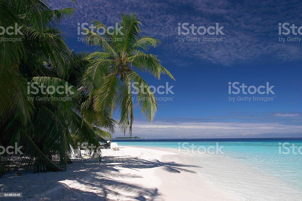 palmbeach royalty-free stock photo