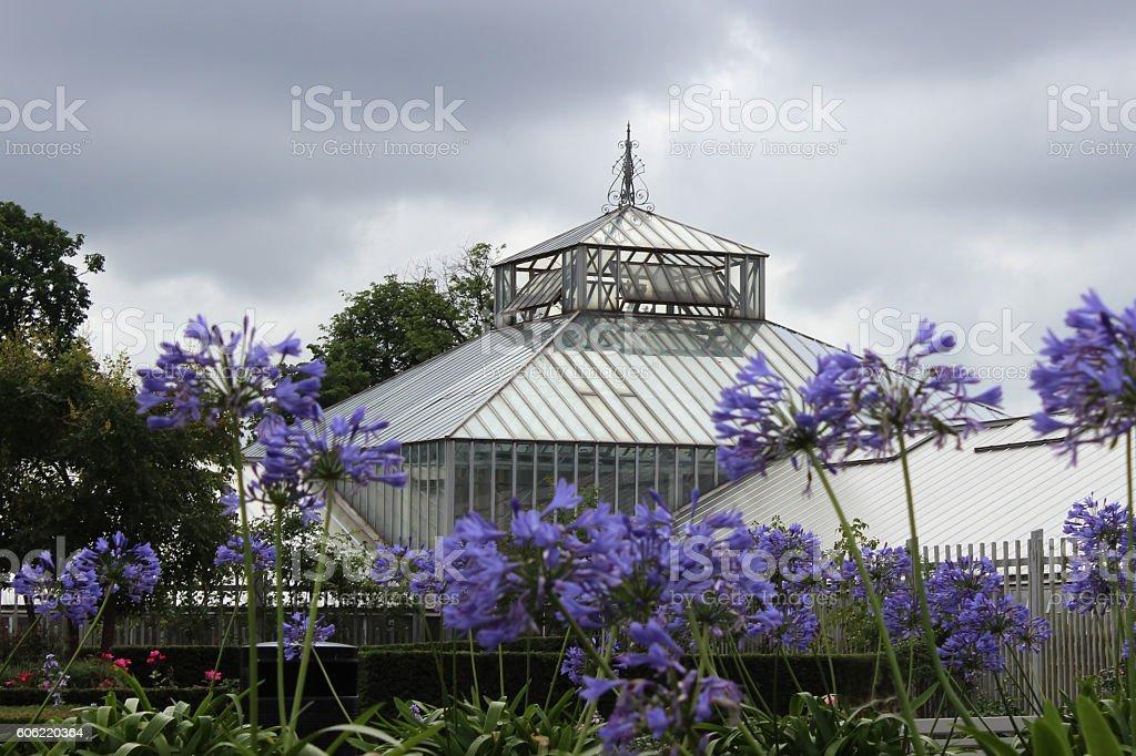 palmenhaus stock photo