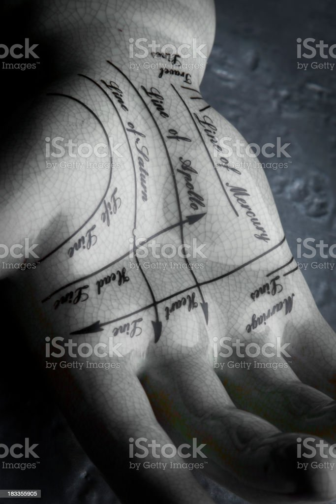 Palmistry. stock photo