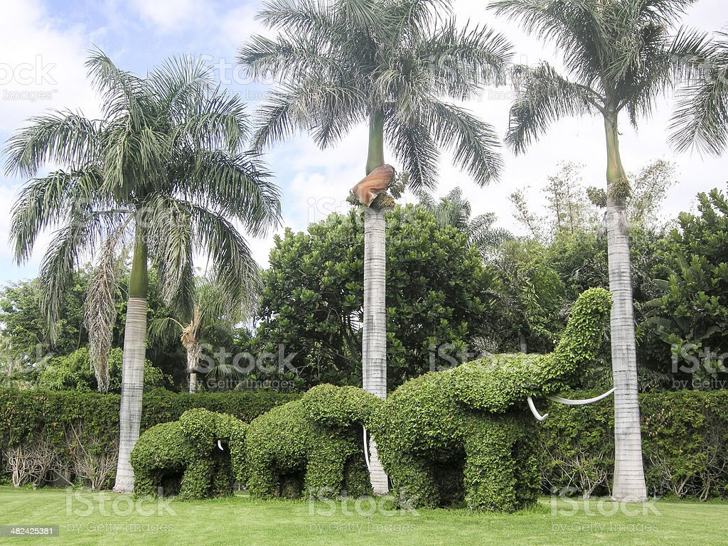 Palms and elephants royalty-free stock photo