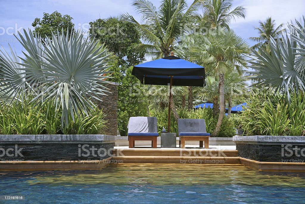 Palms And Sun Loungers By Swimming Pool royalty-free stock photo