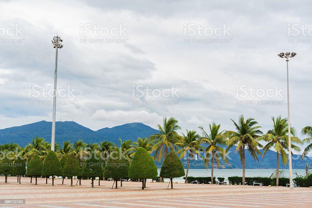 Palms and trees near China Beach in Danang in Vietnam stock photo