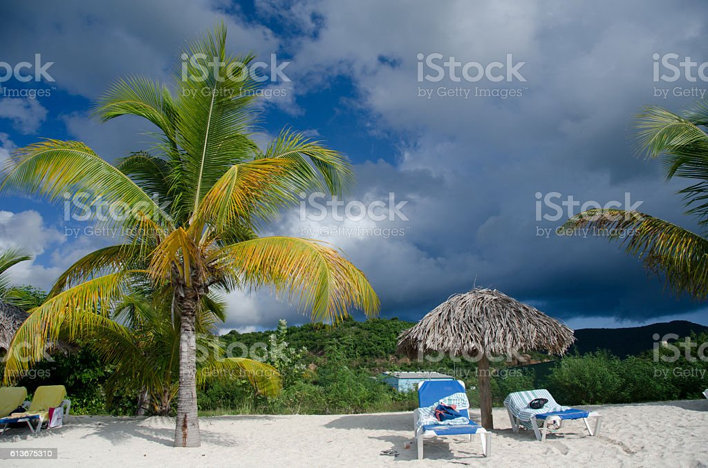 Palms, beach chairs and palm leaf umbrellas stock photo