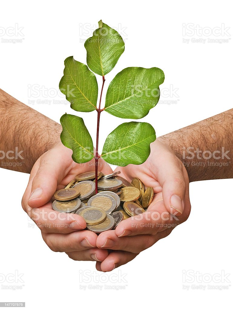 Palms with a tree growing from pile of coins royalty-free stock photo