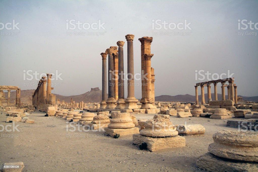 Palmyra 23 stock photo