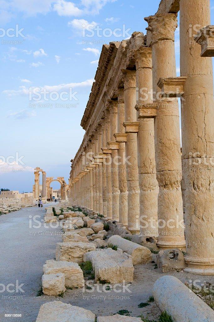 Palmyra - Colonnades stock photo