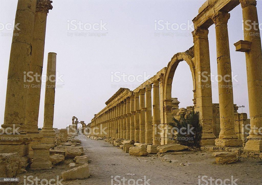 palmyra columns royalty-free stock photo