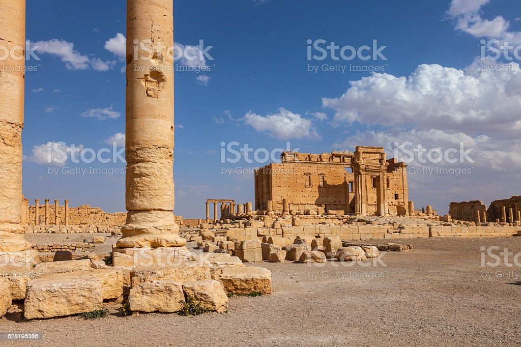 Palmyra stock photo
