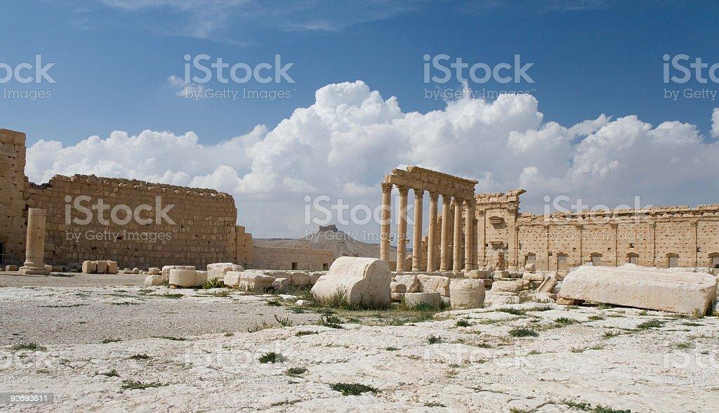 Palmyra stock photo
