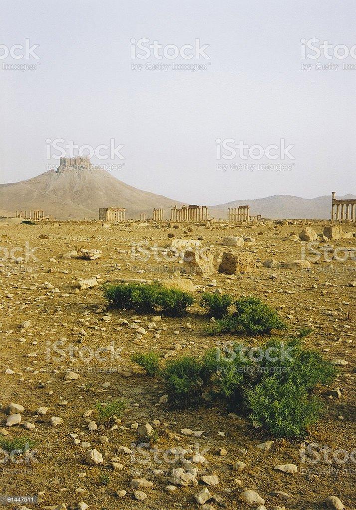 palmyra roman desert ruins syria royalty-free stock photo