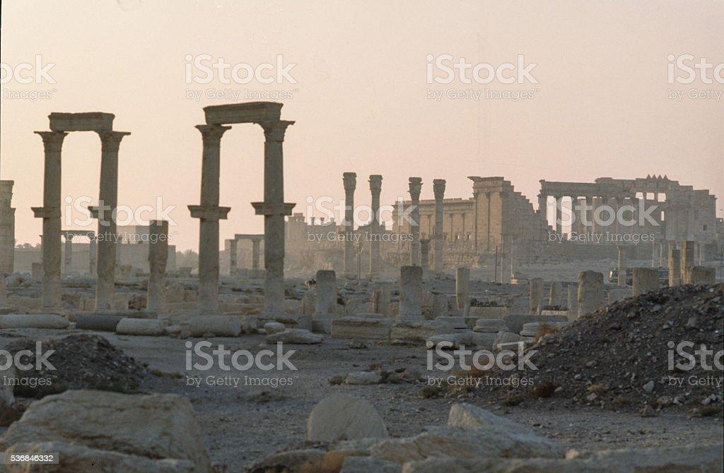 Palmyra, vintage picture stock photo