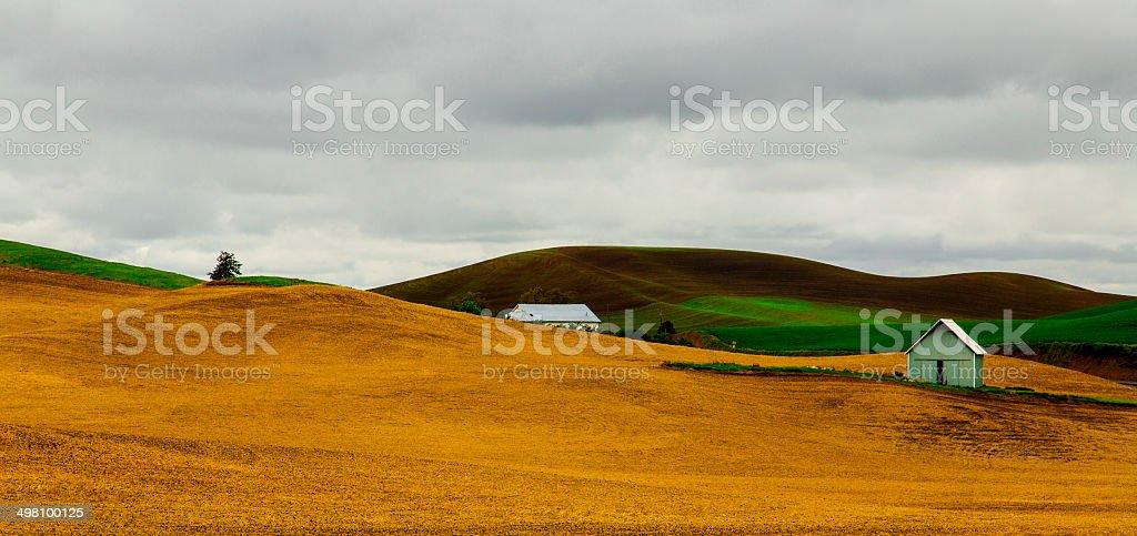 Palouse countryside stock photo
