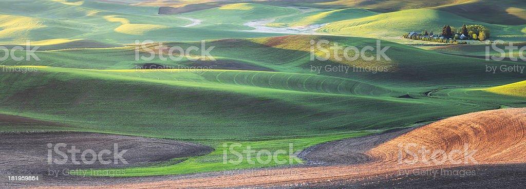Palouse Farm Panorama stock photo