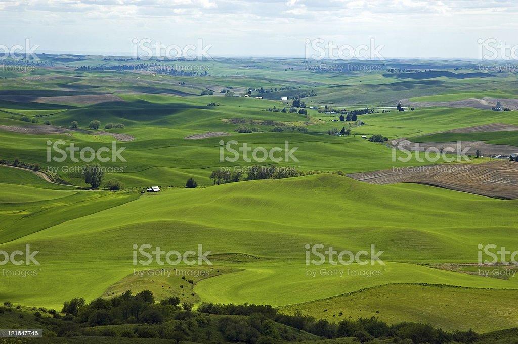 Palouse panorama stock photo