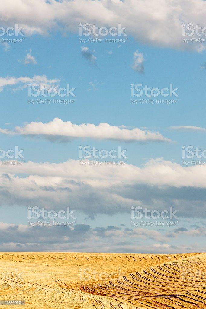 Palouse stock photo