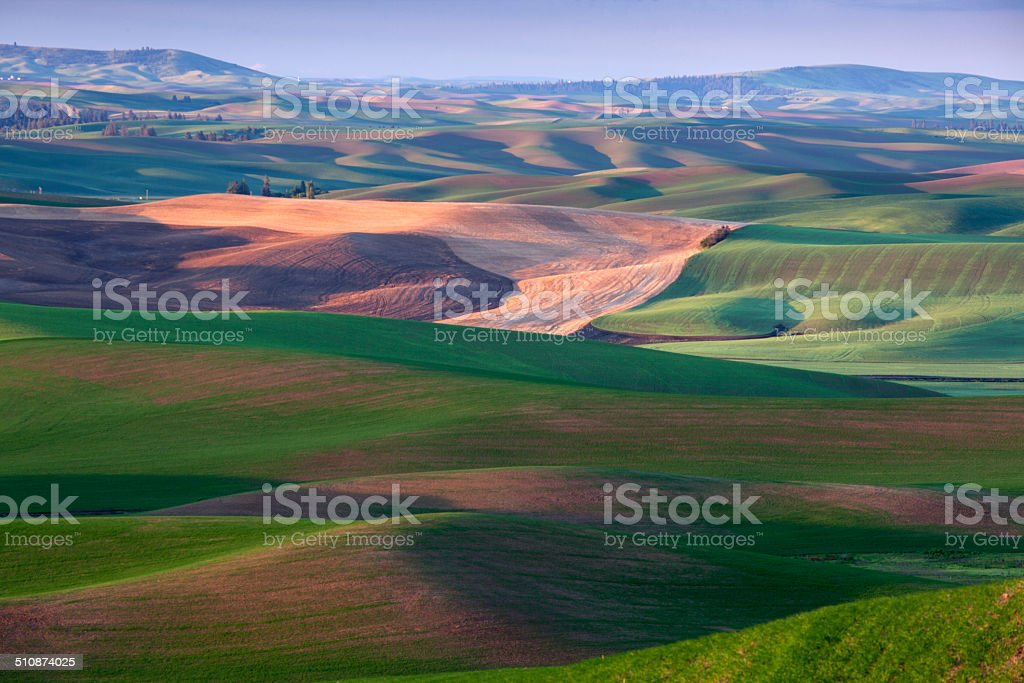 Palouse spring greens from Steptoe butte stock photo