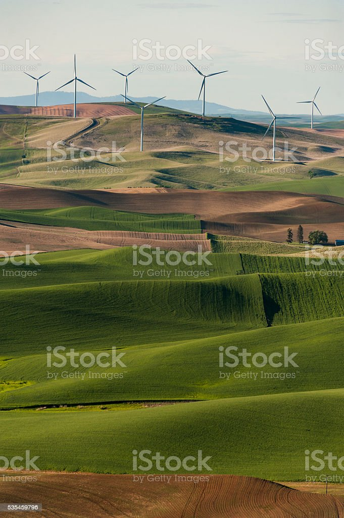 Palouse Wind Turbines stock photo