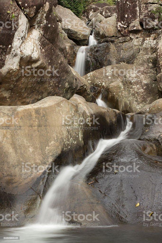 Paluma Range National Park stock photo
