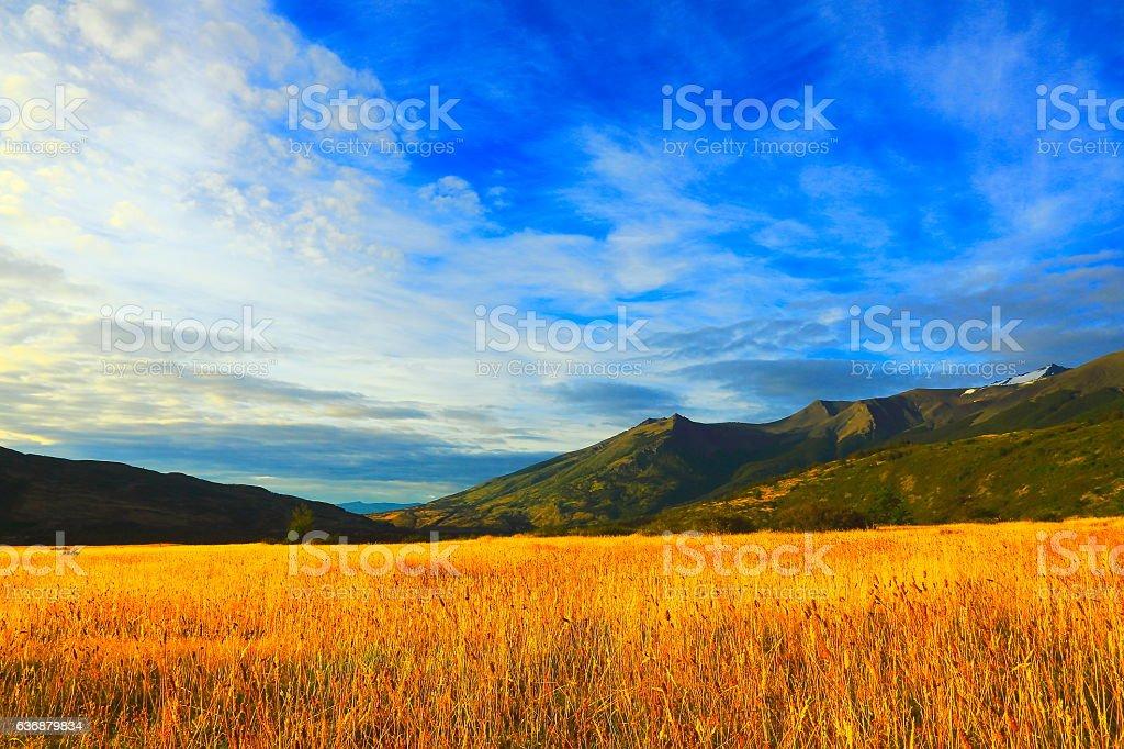 Pampa Estepe, patagonia Wilderness landscape stock photo