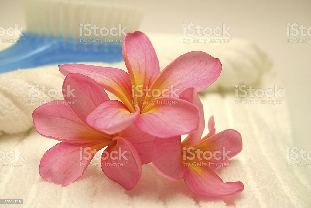 pampering tools royalty-free stock photo