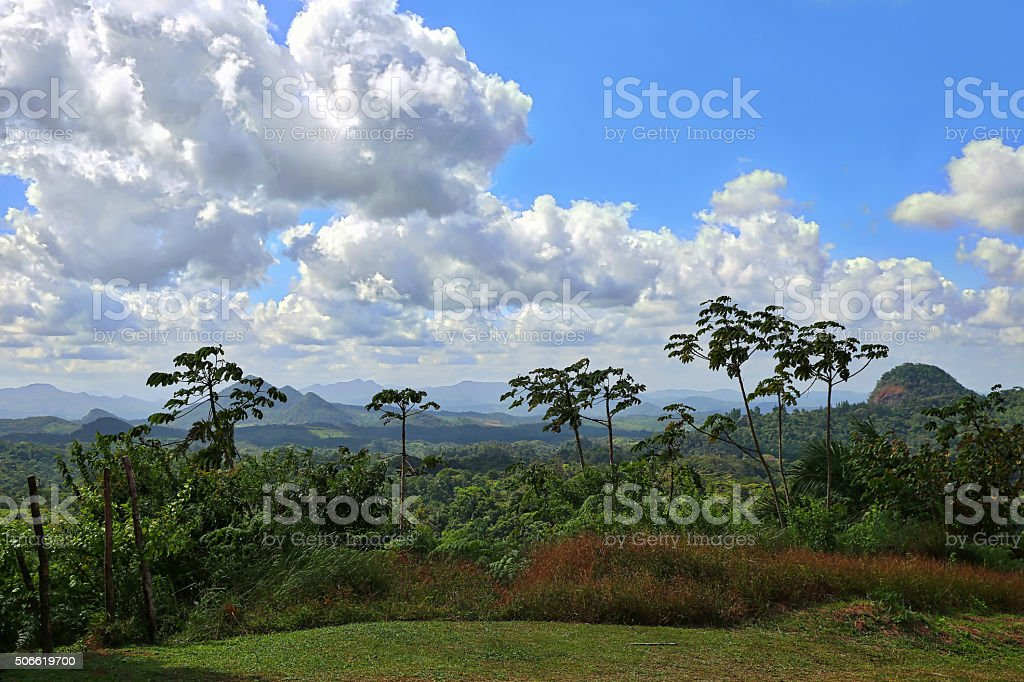 Panama Rainforest and Mountains, stock photo