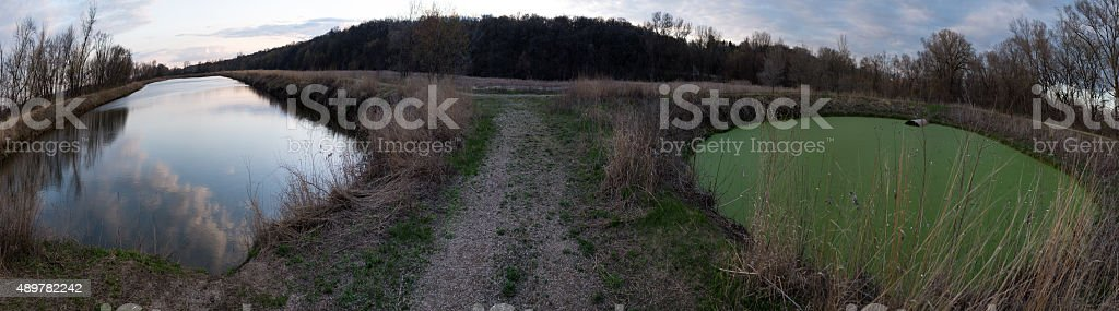 Panaroma shows Pristine pond next to Polluted Green pond stock photo