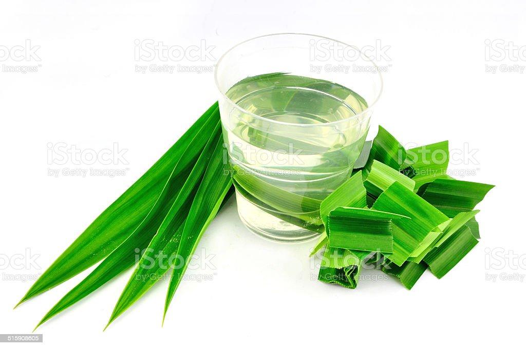 Pandan Leaves Herbal stock photo