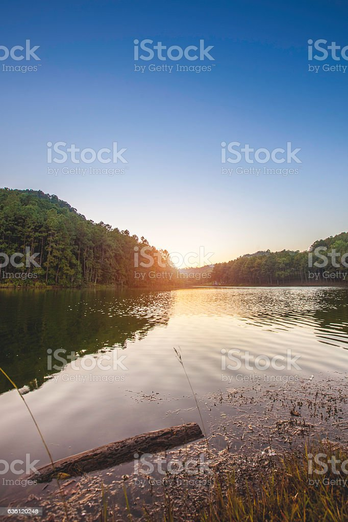 Pang Ung. Beautiful forest lake in the morning. stock photo