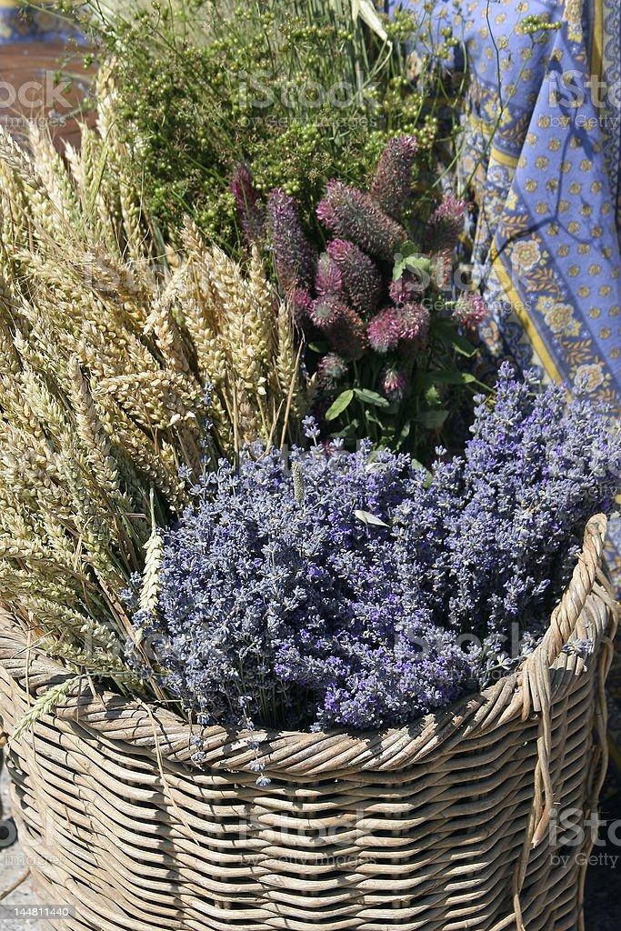 Panier de lavande et fleurs champ?tre royalty-free stock photo