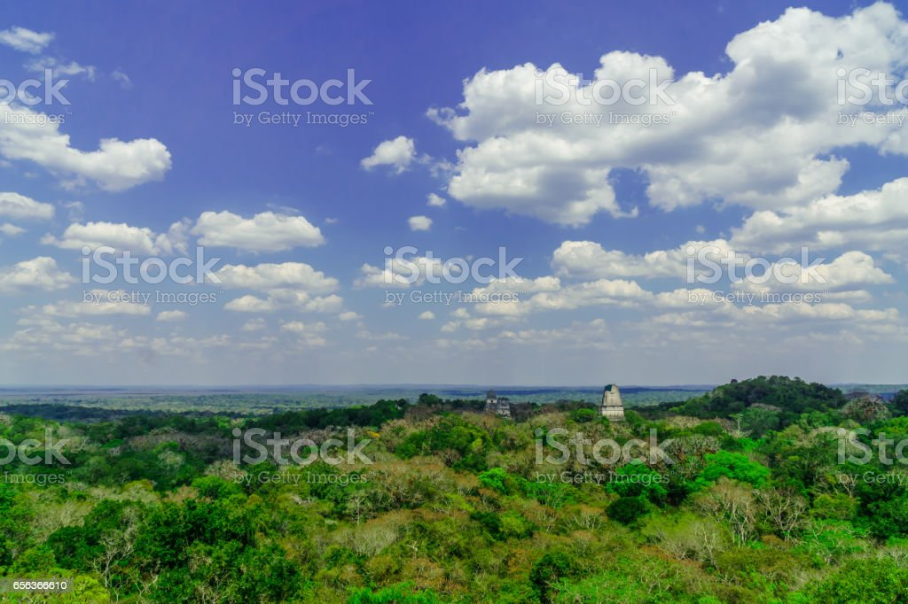 panoram of Maya pyramid in the rain forest of Tikal in Guatemala stock photo