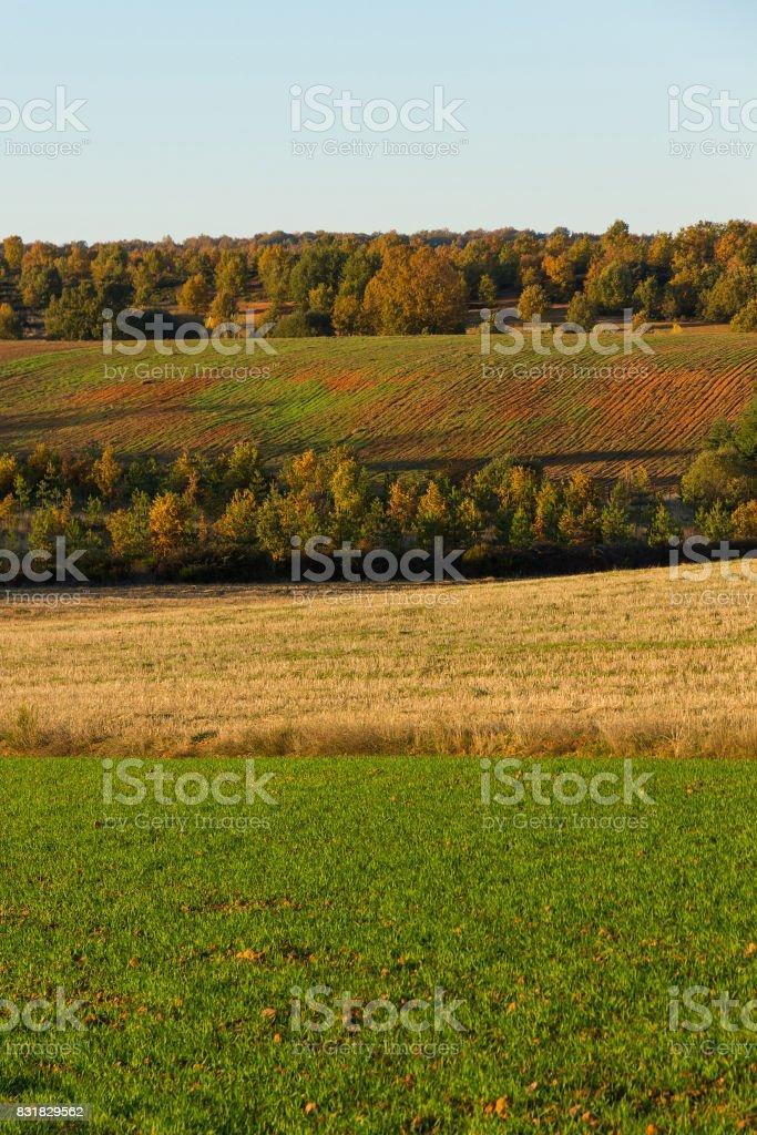 Panorama Autumn Scenery - Panorama de Paisaje Otoñal stock photo