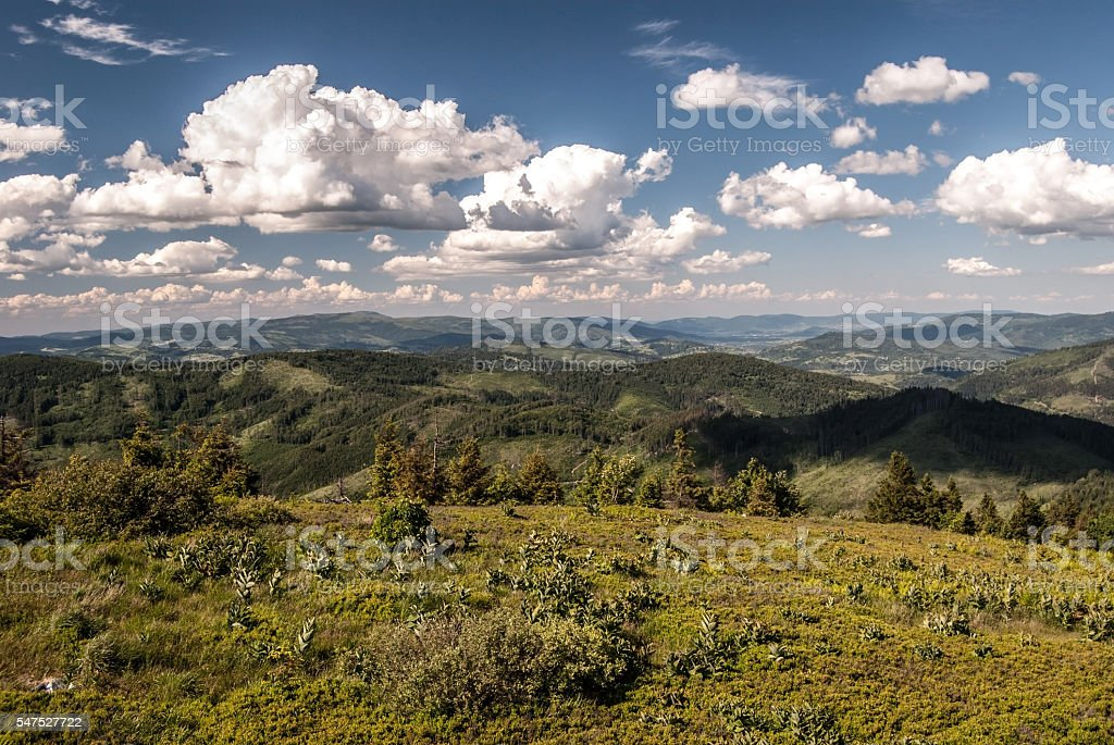 panorama from Velka Raca hill in Kysucke Beskydy mountains stock photo