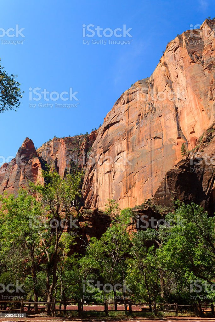 Panorama from Zion National Park stock photo