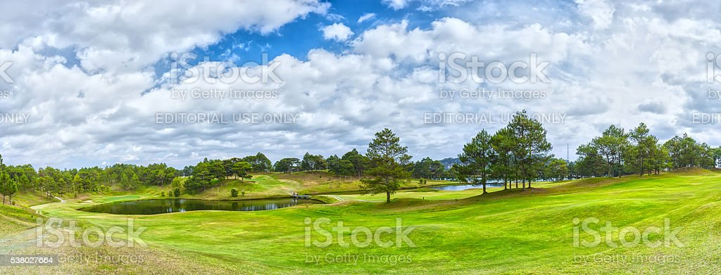Panorama Golf inside pine forest stock photo