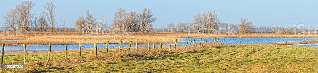 panorama landscape at Havel River with meadow (Germany) stock photo